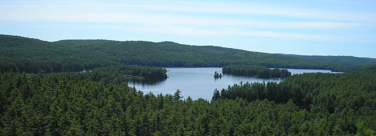 Aerial view of a lake and forest
